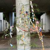 川の日記念「七夕飾り作り」を行いました。