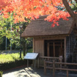 秋の紅葉と水車小屋広場