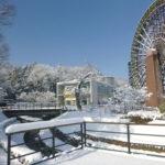 雪が積もった大水車の様子